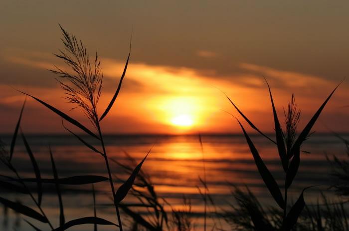 Strand nordsee sonnenuntergang  Ferienwohnung in Cuxhaven-Duhnen, direkt am Wattenmeer ...